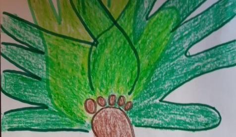 L'albero delle mani
